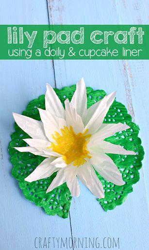 Make a Lily Pad Craft Using a Cupcake Liner & Doily - Great kids craft | CraftyMorning.com