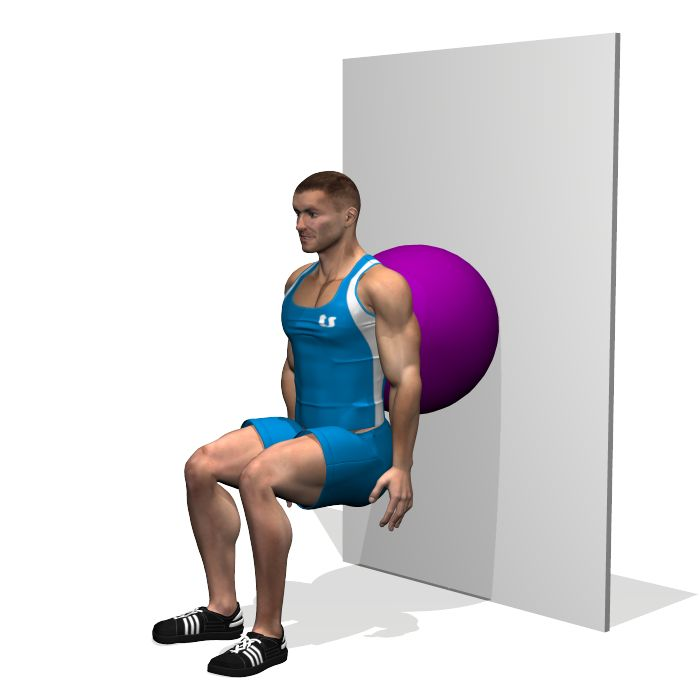 FITBALL WALL SQUAT INVOLVED MUSCLES DURING THE TRAINING QUADRICEPS