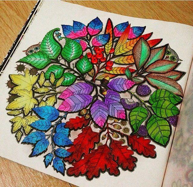 Jardim Secreto Adult ColoringColouringColoring BooksSecret GardensJohanna