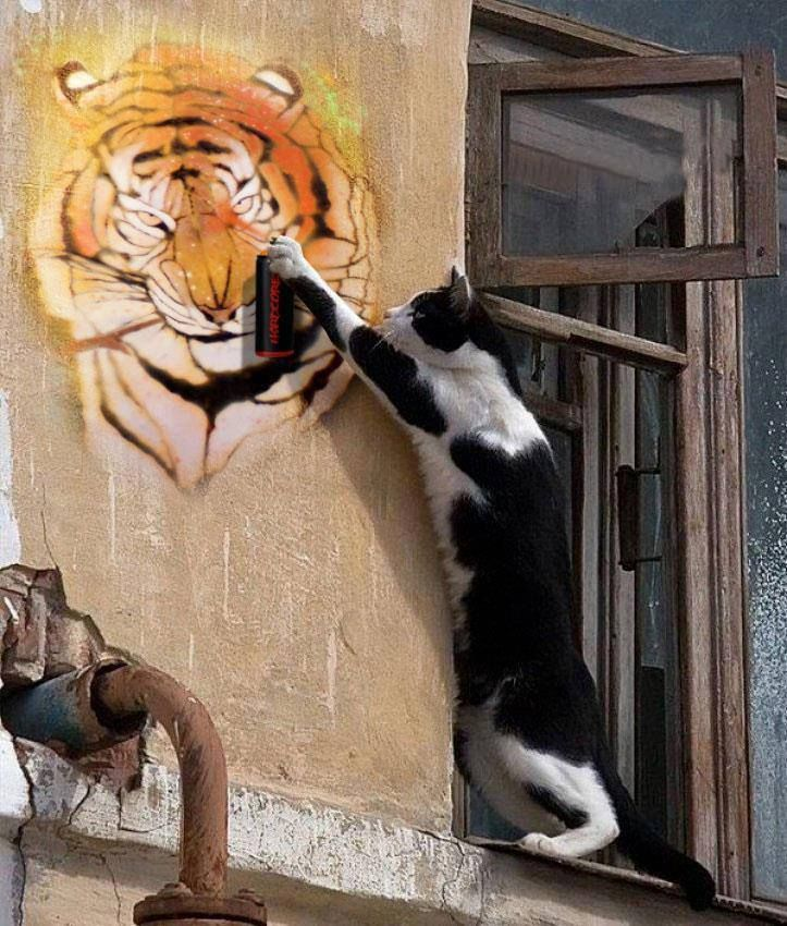 Картинка лезть на стену защита бизнеса