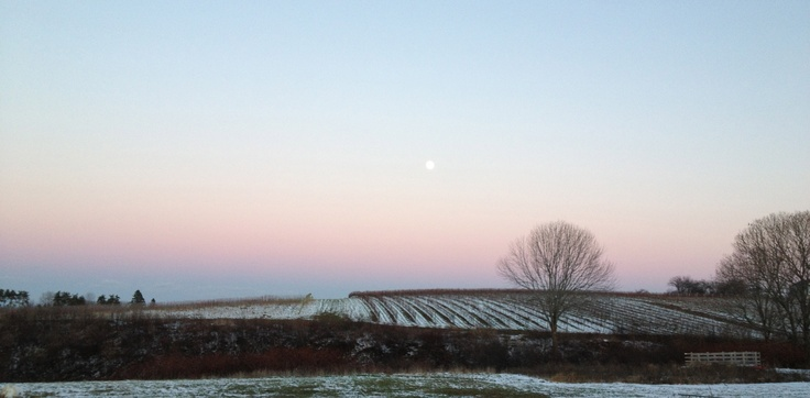 November moonrise..