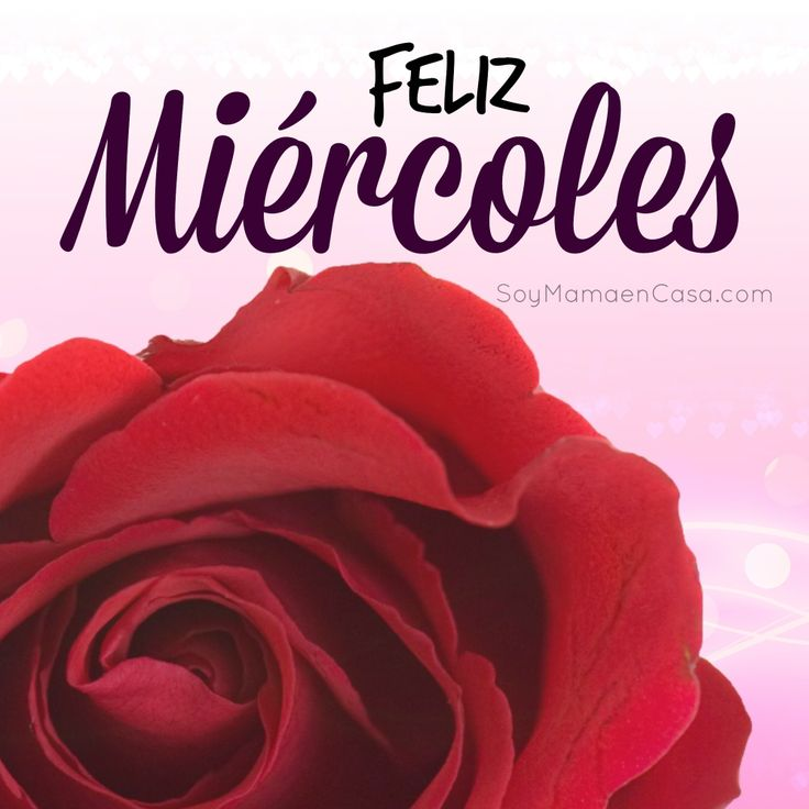 #feliz #miercoles #buenos #dias #saludos  www.soymamaencasa.com