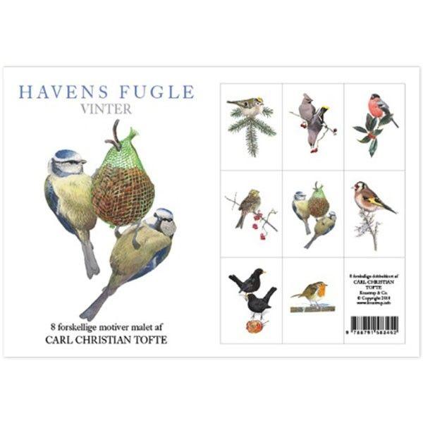 Postkortpakke - Havens fugle - Vinter