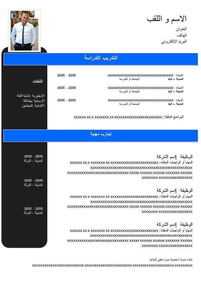 نموذج سي في احترافي جاهز بالعربي والانجليزي Cv Template Word Cv Template Words