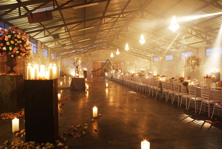 Ludwig's Roses in Pretoria East