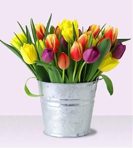 Easter Flowers - A bucket of tulips - so simple yet beautiful!