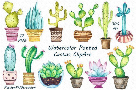 Aquarel Potplanten Clipart Set Omvat 12 Png Bestanden Met Een Transparante Achtergrond Elk Bestand Is In Hoogwaardige 300dpi Re Clip Art Cactus Clipart Cactus