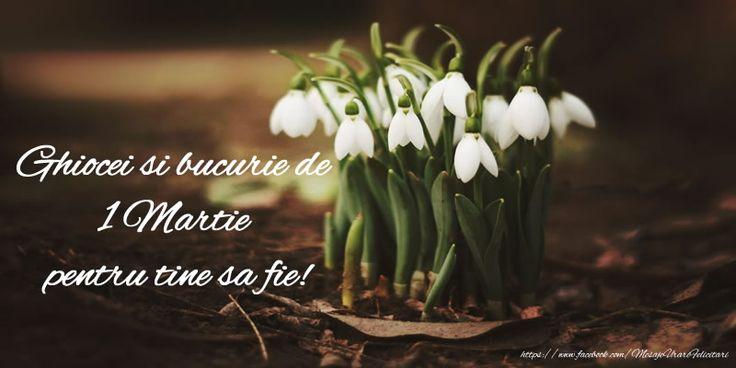 Ghiocei si bucurie de 1 Martie pentru tine sa fie!