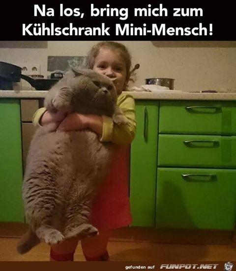 lustiges Bild 'Na los.jpg'- Eine von 20638 Dateien in der Kategorie 'witzige Bilder' auf FUNPOT.