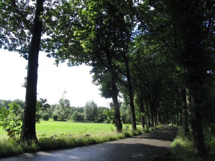 Oisterwijk, The Netherlands.