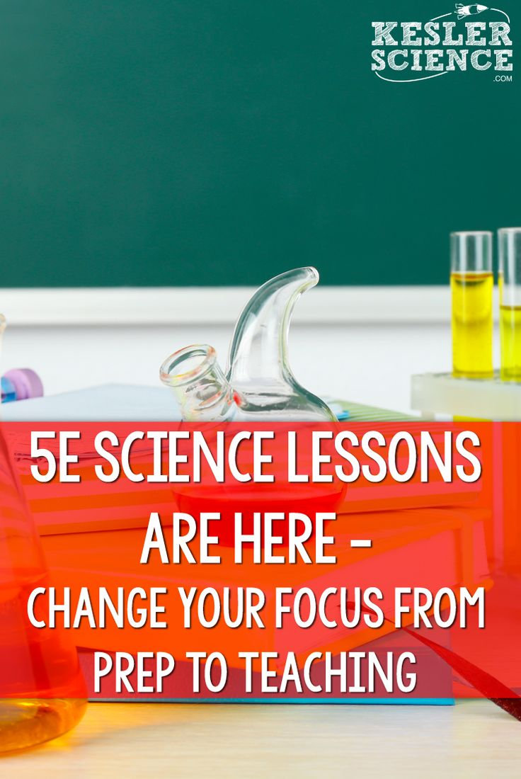 best 25  science curriculum ideas on pinterest