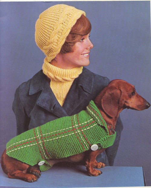 I need one of these for Zeppelin!