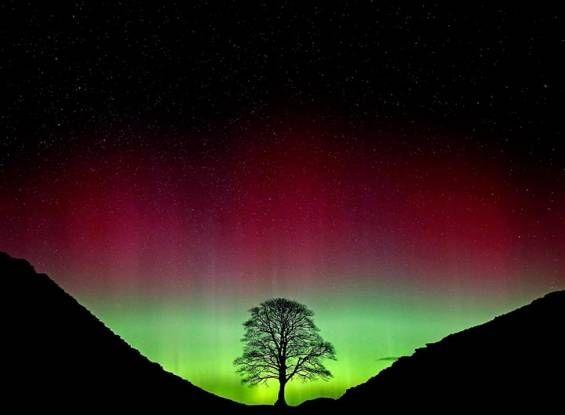 Foto yang dirakam pada 7 Mac 2016 ini memaparkan pemandangan langit di Northumberland, Utara England yang disimbahi cahaya kesan fenomena alam yang dikenali sebagai Aurora Borealis.