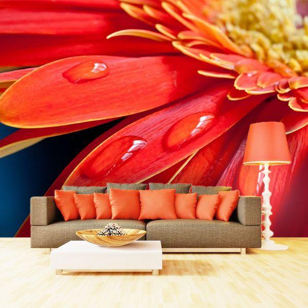 Fotomurales llenos de color para tu sala de estar.