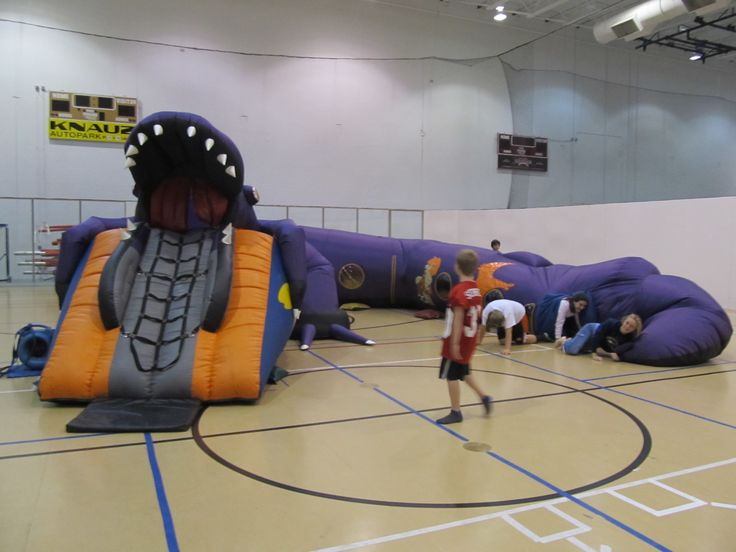 Dinosaur Adventure Wind Tunnel Chicago Party Rentals