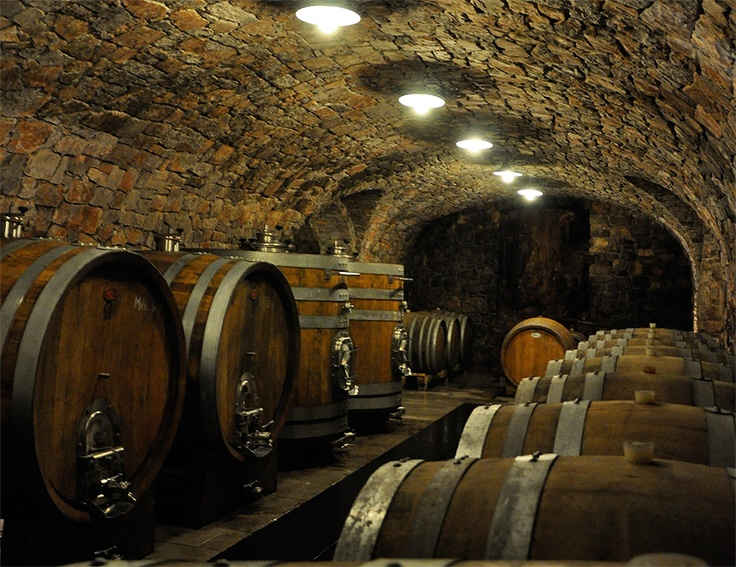 Trilogy Wine Cellar : Images about things i love on pinterest buses