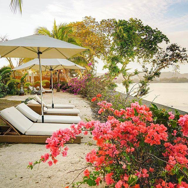 Отель Angsana Balaclava Mauritius | Балаклава | Округ Памплемус | Маврикий | Африка.  Отель Angsana Balaclava расположен в уединенном местечке у залива Тёртл-бей на северо-западном побережье Маврикия. В отеле предоставляются просторные люксы. К услугам гостей отеля тропические сады, открытые бассейны, а также частный пляж. Элегантные люксы этого 5-звездочного курортного бутик-отеля обставлены современной мебелью. В люксах настелены деревянные полы. Все люксы оснащены кондиционеро...