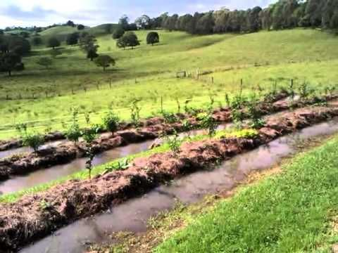 How to Build a Swale on Contour Successfully - The Permaculture Research Institute