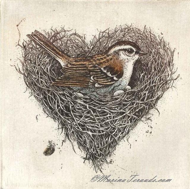 Bird Nest Drawing - AskPanda Answers Search Engine