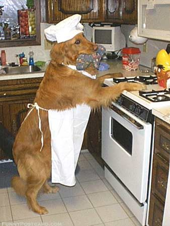 Did you know you can make dog treats for your furry friend at home?  Try it (but ask mom and dad for help first)- it's fun!