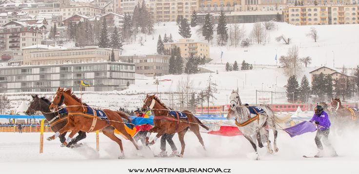 www.martinaburianova.cz Horses - White Turf 2015