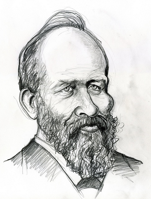 James A. Garfield, 20th president of the United States 1881. | Presidents of the United States ...