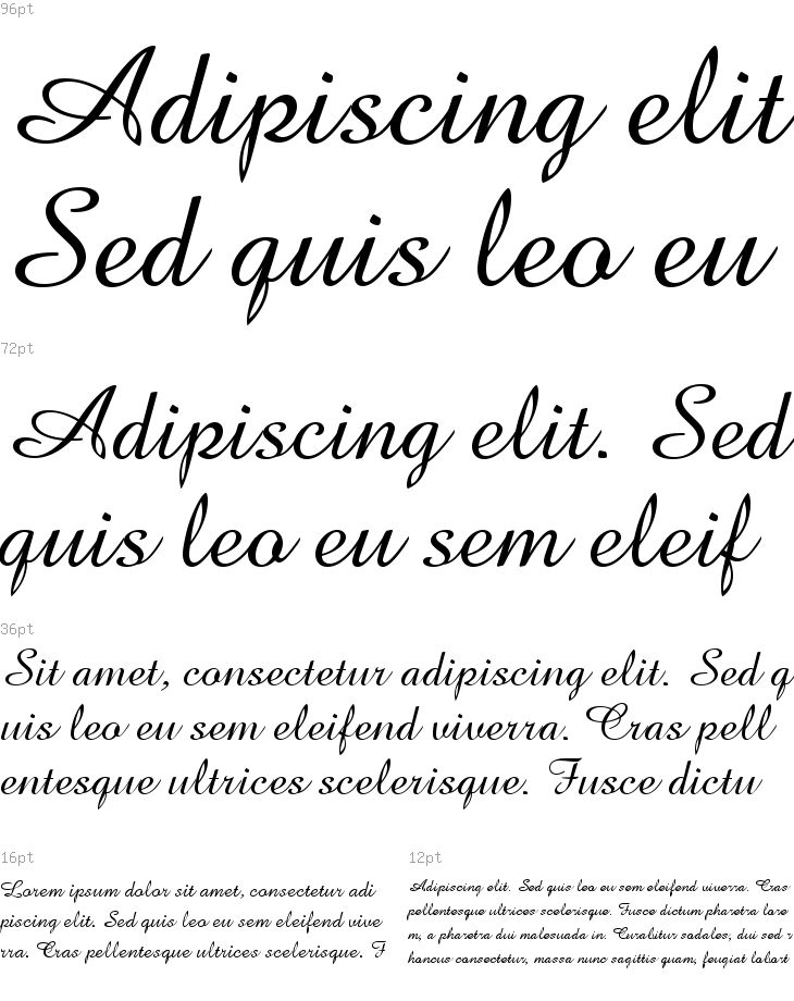 Amazone Bt Font Free Download