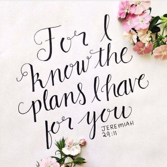 He has plans for us. With optimal health often comes clarity of thought. Click now to visit my blog for your free fitness solutions!