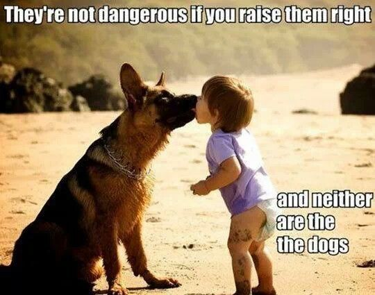 They're not dangerous if you raise them right,    & neither are the dogs   ;): Germanshepherd, Dogs And Kids, True Words, So True, Pit Bull, Funny Photo, Baby Dogs, German Shepherd, True Stories