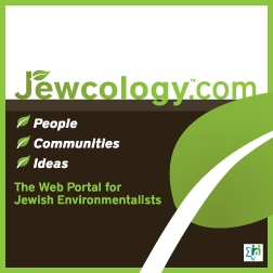 In the Jewcology store, you can browse products shared by Jewish environmental activists, educators, and organizations around the world.