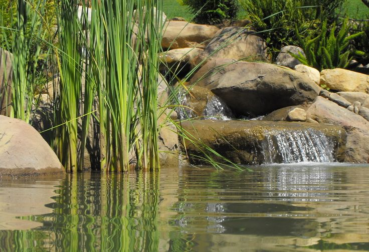 42 best images about waterfalls and ponds on pinterest for Fish pond rocks