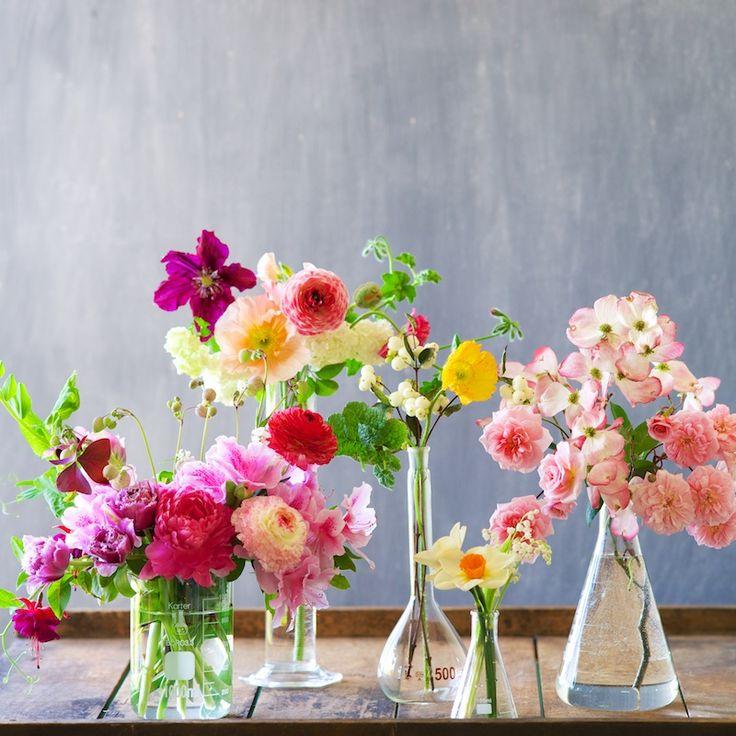 Clematis, Ranunculus, Peony, Daffodil .....