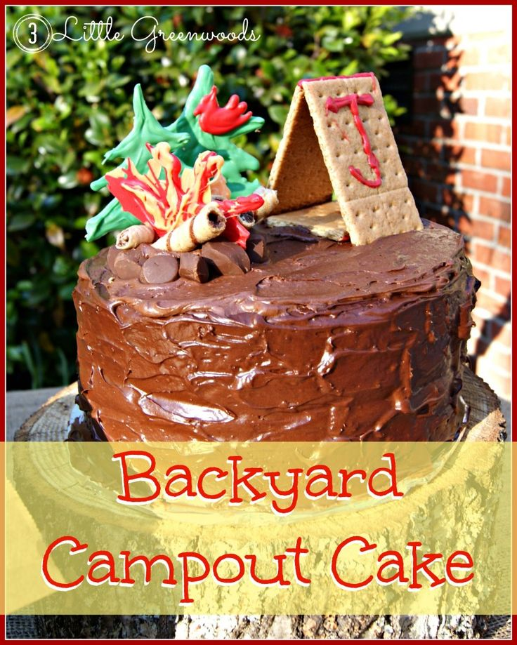 Backyard Campout Birthday Cake PartiesBirthday Party ThemesBirthday