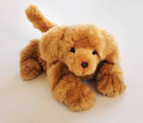 Brando il cane - anche io sono Empathy, ho una tasca nella mia pancia per riscaldare chi mi sta vicino!