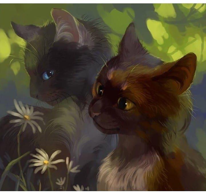 Картинки про котов воителей с именами