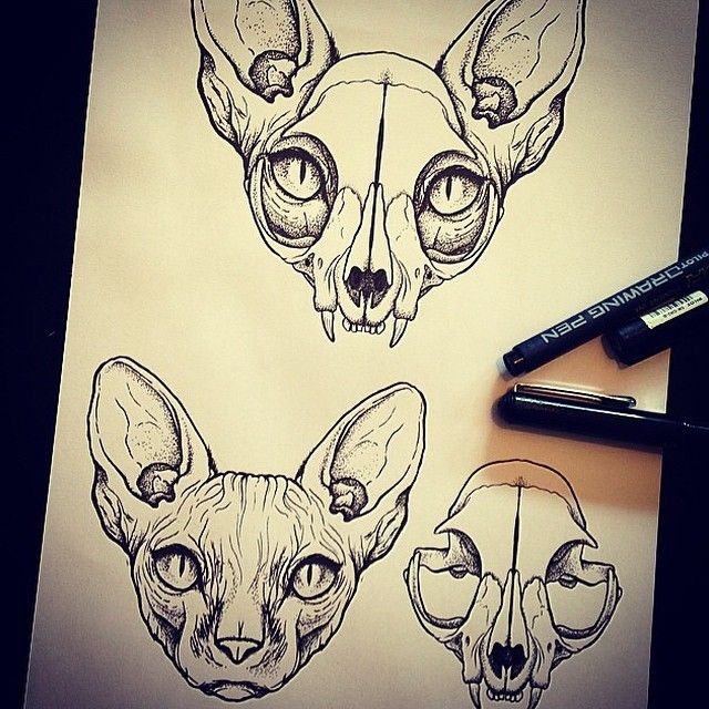 cat skulls- with ears- yes.