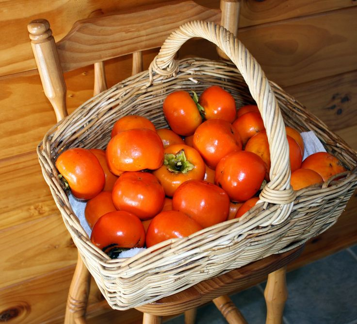 A basket of persimmons from the tree we planted.