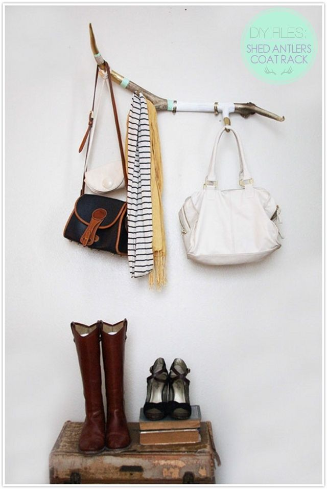 DIY Shed Antlers - they make a fantastic scarf, coat, or jewelry rack