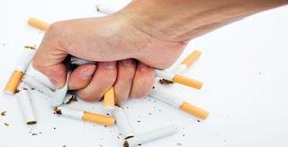 Pernahkah Terbersit Mengapa Rokok Gak Punya Expired