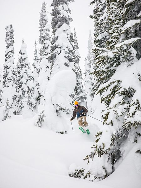 Skiing: The Great Canadian Road Trip  Fernie, British Columbia, Fernie Alpine Resort