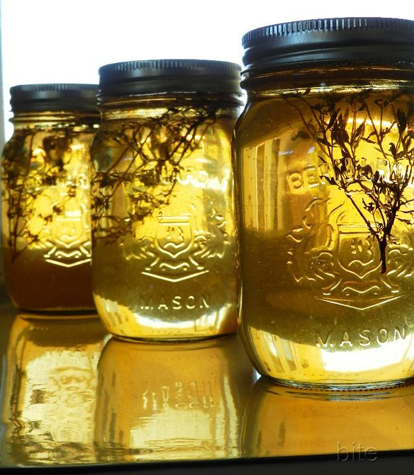 apple cayenne and thyme jelly
