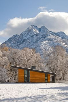 Design Inspiration: Modern Cabin Love - Studio MM Architect