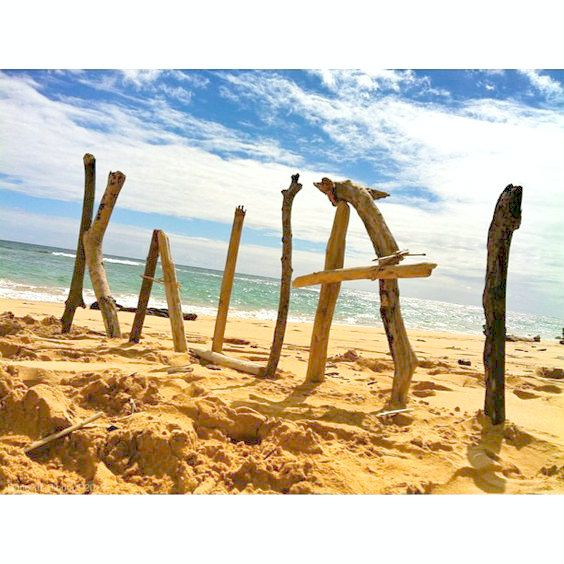 41 best kauai travel images on pinterest attraction kauai i am going to kauai this summer summer of and i am so excited to go and think i will love it that is the reason there are so many kauai pins solutioingenieria Image collections