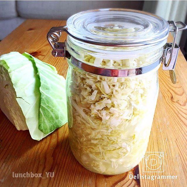 【 #おうちごはん通信 】photo by @lunchbox_yu #乳酸キャベツ が今、注目されています‼️キャベツを刻んで塩と砂糖で漬け、しばらく放置するだけ😊✨ザワークラウトやシュークルートとも呼ばれています💡@lunchbox_yu さんはキャベツ丸ごと1つを乳酸キャベツに☺️保存瓶がかわいらしくて真似したくなりますね🙌🏼✨ . -------------------------- ★詳しくは @ouchigohan.jp プロフィールURLから見てくださいね! 刻むだけ!話題の発酵食品「乳酸キャベツ」を取り入れた暮らし https://ouchi-gohan.jp/545/ -------------------------- ◆このアカウントではインスタグラマーさんの素敵なPicをご紹介しています。 ハッシュタグ #LIN_stagrammer#delistagrammer #デリスタグラマー を付けて投稿してみてくださいね! ※これらいずれかのハッシュタグがついた投稿を、おうちごはんFacebookページ でもご紹介させていただくことがございます。…