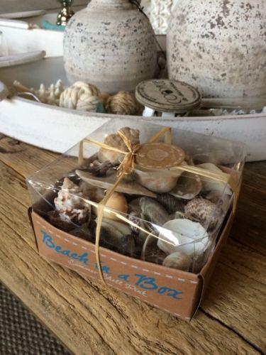 Pent innpakket gaveeske med tropiske skjell og sneglehus fra Riviera MaisonKjempefine skjell til å dekorere lykter og lysfat med, og superfine å kombinere med våre anker, sjøstjerner og sjøglass.Nettovekt:Diameter på eske 12cm