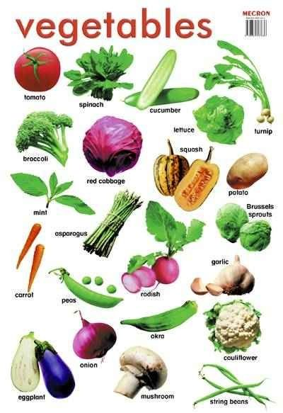 Easy learning : vegitable names with pictures. #HowTo #kids #kidslearning #vegitablenames