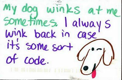 ;)Dogs Quotes, Laugh, Dogs Wink, Pets, Funny, So True, Things, True Stories, Animal