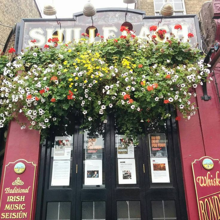 A proper Irish Pub in #StokeNewington #London. Love the greenery!