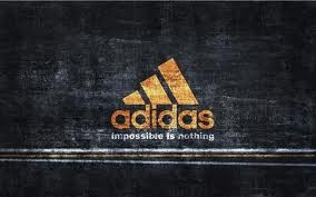 .Yes I would love to own everything by adidas