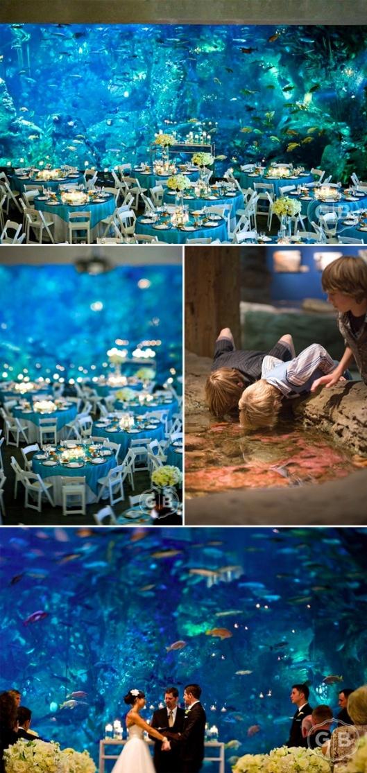 aquarium wedding?!